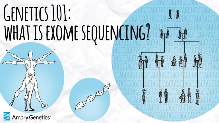 Genetics101-Exome-1920Thumb.jpg