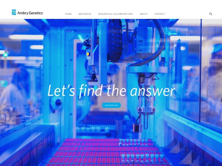 webdesign-bordered2.jpg